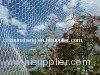 Protect Bird Net
