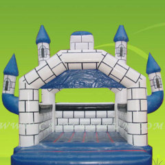 moon bounce,inflatable castles for sales