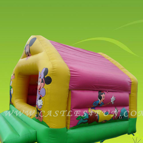 inflatable jumper,bouncy house