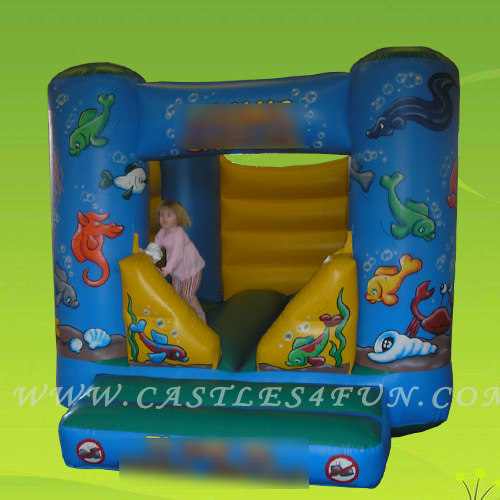 fun inflatable,jumpers