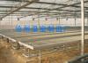Polycarbonate Sheet Greenhouse