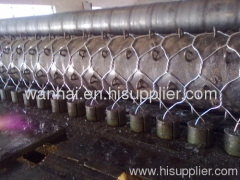 triple twist weave hexagonal wire netting