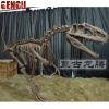 Fiberglass High Imitation Artificial Dinosaur skeleton model