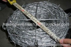Barbed Wire mesh netting