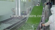 Care and maintenance of conveyor systems