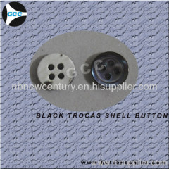 Black trocas shell button