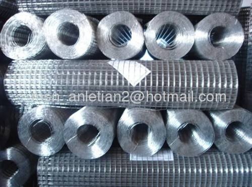 electric galvanized welded mesh