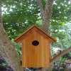 Wooden Bird House&Bird feeder