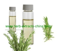 Rosemary Oil with Multiple Usage