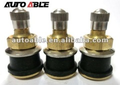 Chrome Valves for truck and bus