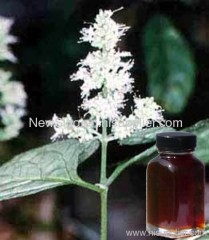 100% Natural Patchouli Oil china manufacturer
