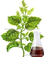 26% Patchouli Alcohol - Patchouli Oil