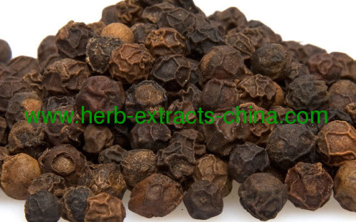 China made Spice Seasoning Black Pepper Oil