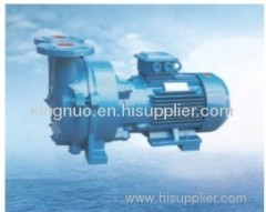 2BV(SKA) series water ring type vacuum pump