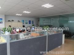 Ningbo Yinzhou Blossom Co.,Ltd.