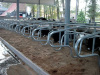 cattle equipment cattle free stal dairy stalll IN-M074