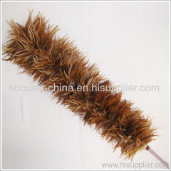 Cock Feather Duster