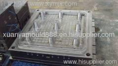 Tray mould/mold