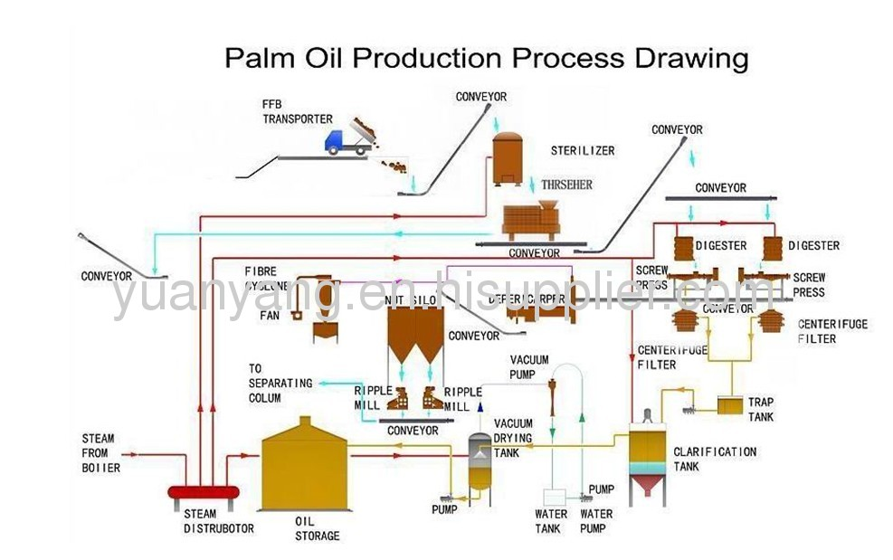 Palm Fruit Processing