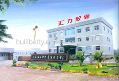Zhejiang Huili Capsules Co., Ltd