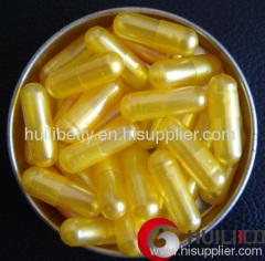 medicine empty capsules