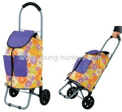 Handle Shopping Trolleys