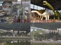 Zigong City Dragon Cultures & Arts Co., Ltd
