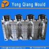 Plastic Blowing Bottle Mould