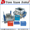 Plastic Turnover box mould