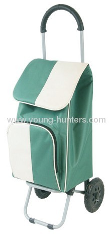 green fabric shopping trolley for supermarket
