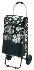 Printed Fashionable Shopping Trolley Bag With Eva Handle