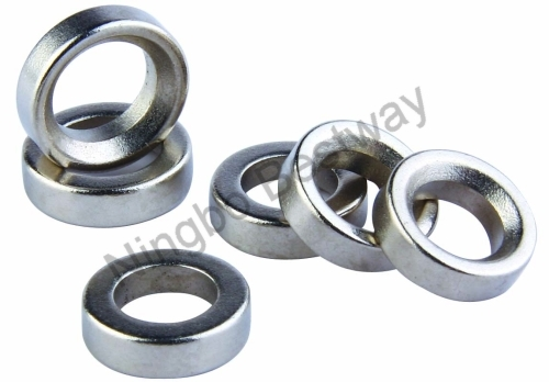 Neodymium Magnetic Ring