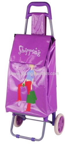 fashional durable folding shopping trolley bag