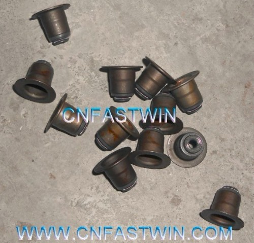 CHINA OIL SEAL VALVE