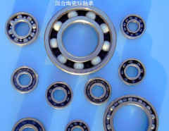 6200 2RS Stainless Steel ball Bearings