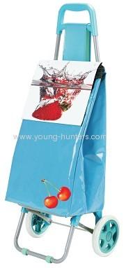 blue foldable trolley bag for supermarket