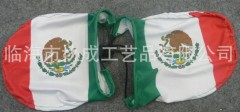 Custom Mexico car mirror flag