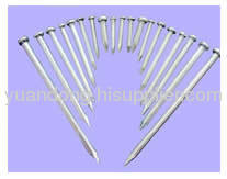 wire nail galvanized iron and stainless steel