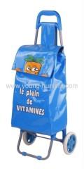 removable trolley bag for market