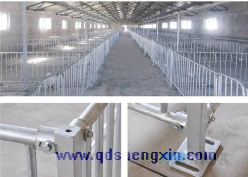Pig equipment fattening Crate