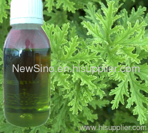 China Original Manufacturer Perfumery Geranium Essential Oil