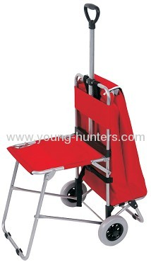 telescopic cart shopping bag