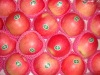 fresh gala apple, gala pple, royal gala apple, fresh apple