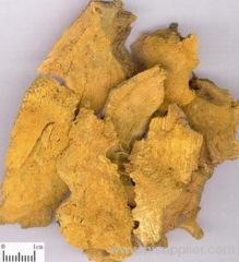Polygonum cuspidatum extract 10% -90% Resveratrol