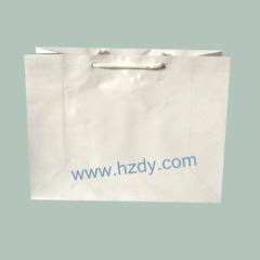 Plain white kraft paper bag
