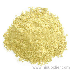 Ginger Root Extract Powder Gingerol