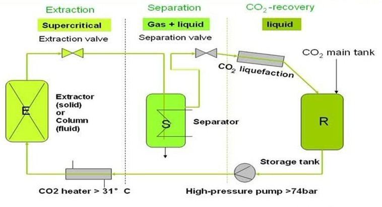 liquid co2 extraction of essential oils When carbon dioxide is subjected to pressure it becomes supercritical and has liquid essential oils is that co2 supercritical co2 extraction.