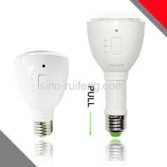 LED magic bulb