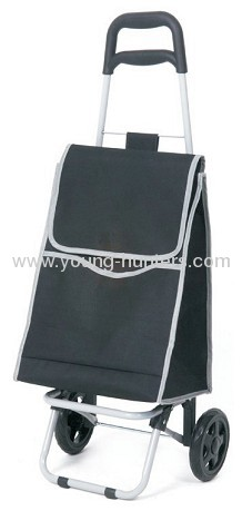 spring 2012 new style folding shopping trolley cart