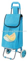 Environmental friendly shopping trolley bag